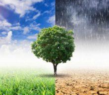 Διαδικτυακή ημερίδα για τις επιπτώσεις της κλιματικής αλλαγής