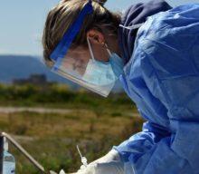 Το πρόγραμμα ελέγχων ανίχνευσης κορωνοιού στη Θεσσαλία αύριο Σάββατο